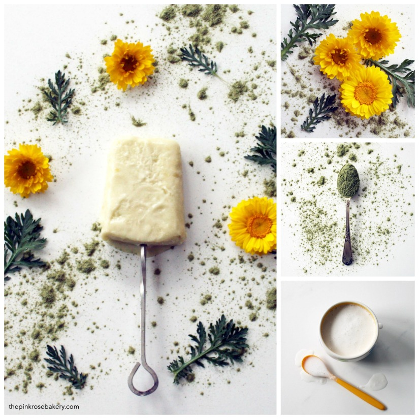 Homemade Green Mango & Coconut Ice Lollies {gluten free, dairy free} | The Pink Rose Bakery